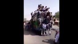 Xe buýt trở nhiều khách nhất thế giới